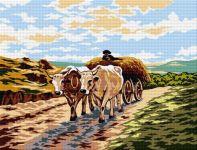 Cart with bulls